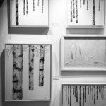 Exhibition_by_RochelleMcConnachie