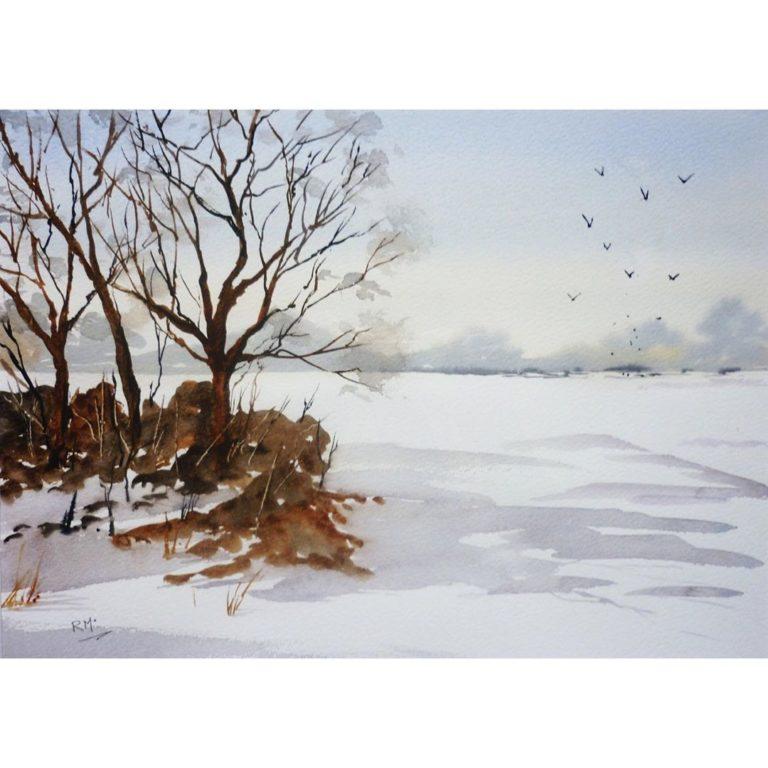 Snow_Fields_by_RochelleMcConnachie